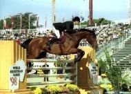 World Equestrian Games, Rome, Italy 1998Rodrigo Pessoa (BRA) and  Gandini Lianos, Showjumping World Champion.