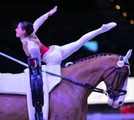 6.-9.12.2012, Salzburg, Pappas Amadeus Horse Indoors; FEI Vaulting World Cup; CVI-W; Anna Cavallaro (ITA) on Harley, lunger: Nel
