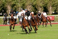 Polo competition - ©Sandrine Boyer
