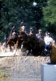 1990 Driving World champion Tomas Eriksson - ©Kit Houghton / FEI