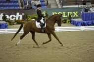 Sophie Wells (GBR) riding Pinocchio - ©Kit Houghton / FEI