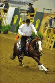 Tom Mccutcheon (USA) riding Gunners Special Nite - ©Kit Houghton / FEI