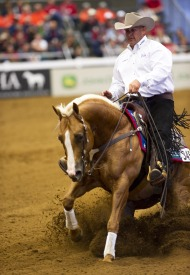 Shawn Flarida (USA) riding RC Fancy Step - ©Kit Houghton / FEI