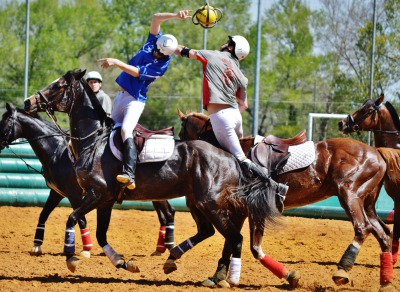 Horse-Ball: France wins the European championships