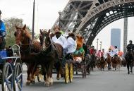 Norman at their Eiffel Towel - Parade Paris Horse-Fair - November 2013 - ©Comité d'Organisation Normandie 2014