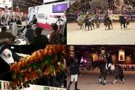 Paris Horse Fair 2013 - ©Comité d'Organisation Normandie 2014