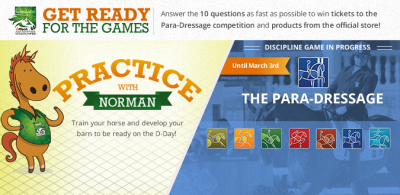 A new Para-Dressage game released on Facebook