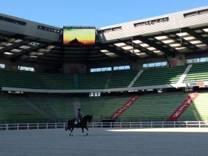 1er cheval au stade d'Ornano - 12 juin 2014