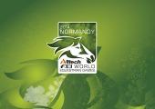 Logo (PC/Mac 1900x1200px)