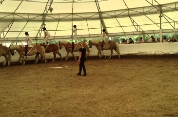 Georges Cotrait Equestrian Vaulting Academy