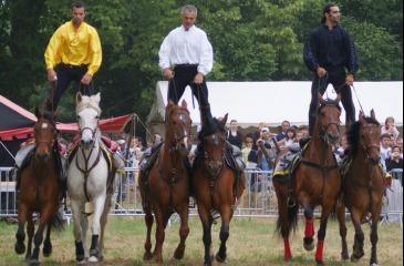 Tribal Equestrian Show