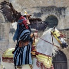 Equestrian Falconers (Amarok Keb)