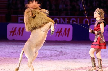 Melie Philippot & Pony-Lion