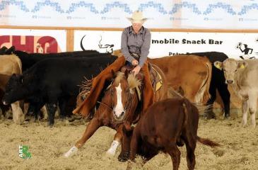 Cabernet Cutting Horse Association