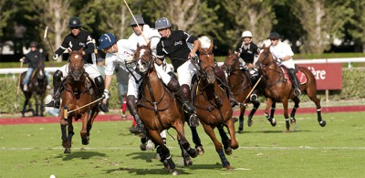 Polo Exhibition: an exciting programme ahead