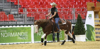 Excitement builds as Reiners prepare for the Alltech FEI World Equestrian Games 2014 in Normandy