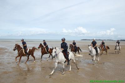Endurance riders make final preparations