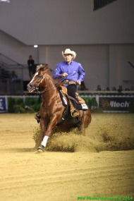 Reining - Team competition - August 25th - ©PSV Photos