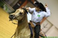 Reining - Gilson VIEIRA DINIZ FILHO - ©PSV Photos