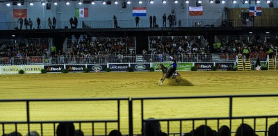 Reining:  The judging system