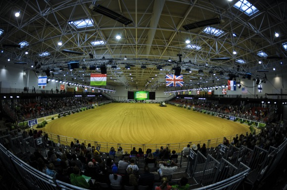 Reining:  The show is on as athletes prepare for the Individual Final