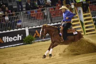 Reining:  Reiners take a day off in Normandy
