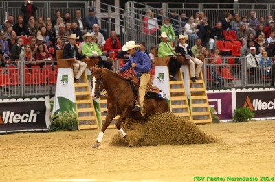 Reining:  Waiting for the Individual Finals