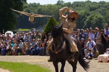 Falconry on horseback