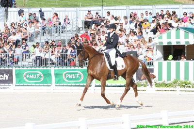 Eventing leader is a local horse!