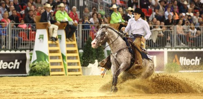 Reining: Boemil Twin Robotop - the only Appaloosa in the Individual Finals