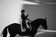Dressage Grand Prix Freestyle - ©Sindy Thomas