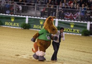 Norman at the Reining Final - ©Jean-Michel Pouteau