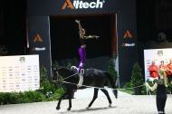 3 - Elisabeth BIERI - Rocky Xxxviii CH - STUMP - Vaulting  Women's final  - ©CO Normandie 2014/PSV