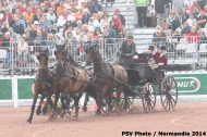 714 - Thibault Coudry - FRA- Cones Driving  - ©CO Normandie 2014/PSV