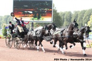 701 - Boyd Exell - AUS Driving - ©CO Normandie 2014/PSV
